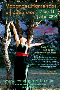 flyer vacances flamencas 2014